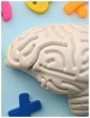 To understand how neuroscience relates to your child, consider these fun activities. Who knows? Your child may one day be a neuroscientist.