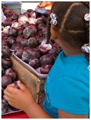 Farmers markets are great places to sneak in educational lessons about all sorts of things. Here's a sampling of what your child can learn at farmers markets.