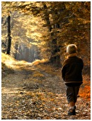 Kids love playgrounds, but Mother Nature provides something even better: miles of woods and fields to walk through. Find out the benefits of a good hike!