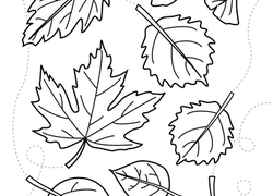 Preschool Fall Worksheets Free Printables Educationcom