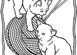 Kitten Coloring Pages Printables Education Com