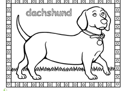 Animals Coloring Pages & Printables Page 14   Education.com