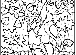 color by number raccoon - Coloring Pages For 2nd Graders