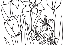 Nature Coloring Pages Printables Education Com