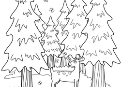 Worksheet Forest Coloring Page