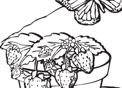 1st grade nature coloring pages printables education com