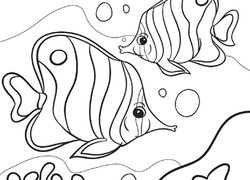 Fish Coloring Pages Printables Education Com