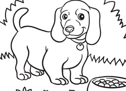 weiner dog puppy coloring page - Free Animal Coloring Pages