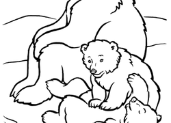 Bear Coloring Pages Printables Education Com