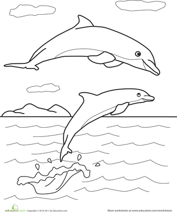 Dolphin Coloring Pages Education