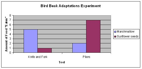 adaptation experiments Animal adaptations activities evolution happens over long periods of time, and so it can be hard for students to understand it isn't something they can see happen in front of their eyes.