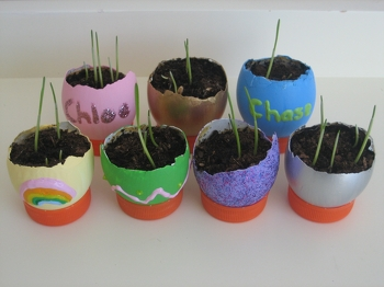 Middle School Holidays & Seasons Activities: Eggshell Planters