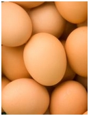 This science fair project idea explores the egg's thin membrane.