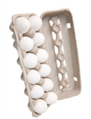 Free science fair project idea that examines the impact of gravity on a dropped carton of eggs. Design a device to protect the eggs from cracking.