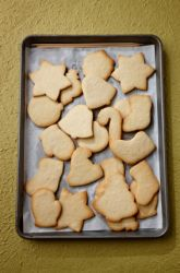 Middle School Science Science Projects: In Search of the Perfect Cookie