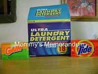 laundry detergent science project This science project examines the effectiveness of various types of laundry detergents on stains trapped on a white handkerchief.