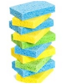 Find out which type of sponge holds the most water.