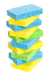 Fifth Grade Science Science projects: Which Type of Sponge Holds the Most Water?