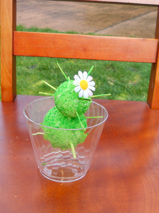 Kindergarten Science Activities: Cactus Craft