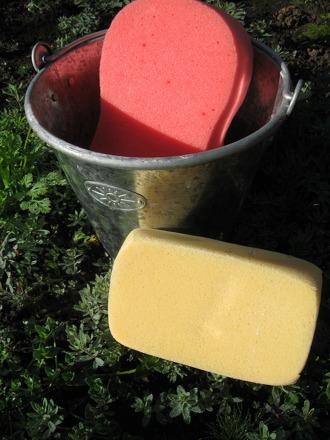 Fourth Grade Holidays & Seasons Activities: Sponge Relay