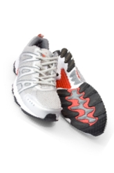 Fifth Grade Science Science Projects: Speedy Shoes