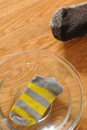 Second Grade Science Activities: Sock Science