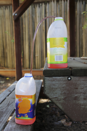 Preschool Science Activities: Siphon With Suction and Gravity!
