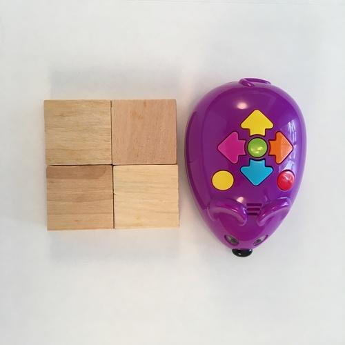 First Grade Science Activities: Robot Around the Block