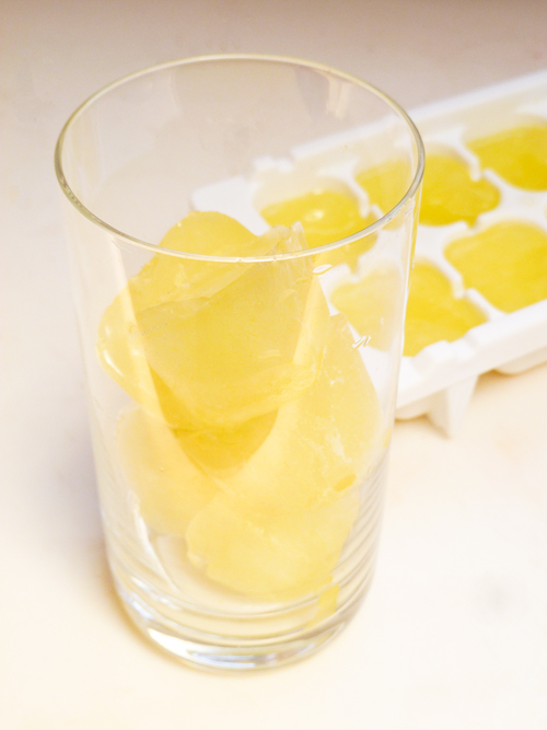 Second Grade Seasons Activities: Lemon Ice Cubes