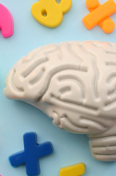Kid-Friendly Neuroscience