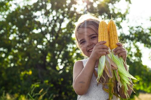 Kindergarten Math Activities: Painting with Corn!
