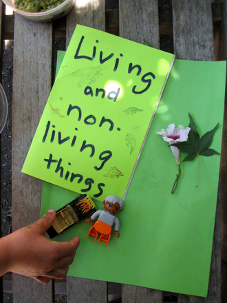 Kindergarten Science Activities: Make a Living and Non Living Scrapbook