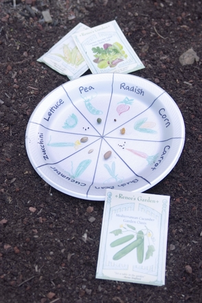 Kindergarten Holidays & Seasons Activities: Make a Handy Seed Chart