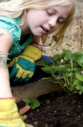 A Guide to Gardening with Your Kids