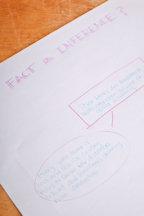 Fifth Grade Reading & Writing Activities: Fact or Inference? Learn the Difference