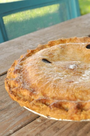 Fifth Grade Holidays & Seasons Activities: Blackberry Pie