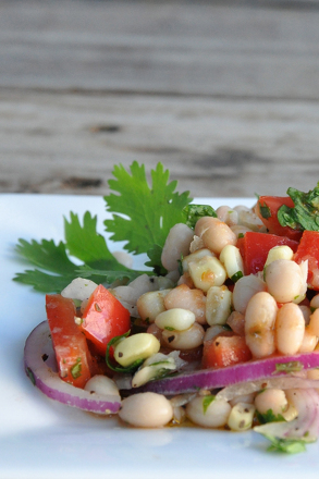 Third Grade Holidays Activities: Red and White Bean Salad