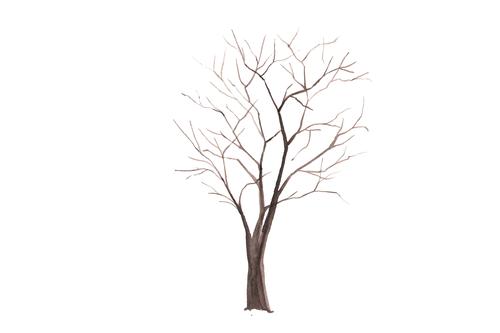 Kindergarten Seasons Activities: Winter Tree Watercolor