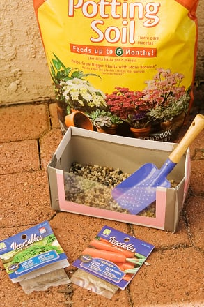 Kindergarten Arts & crafts Activities: Watch Your Garden Grow