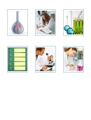 What are the six steps of the scientific method? The answer is just a mouse click away.