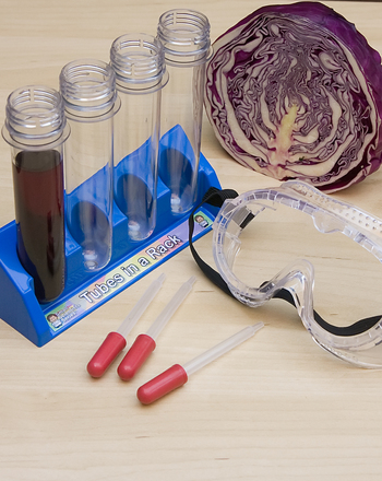 Fifth Grade Science Activities: The Red Cabbage Acid Test