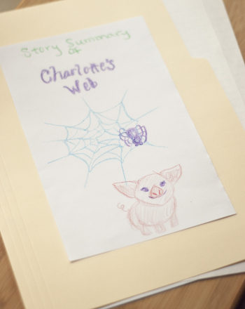 Second Grade Reading & Writing Activities: Create a Story Summary Folder
