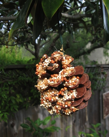 Kindergarten Arts & crafts Activities: Build a Pine Cone Bird Feeder!