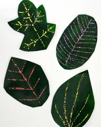 First Grade Arts & Crafts Activities: Create Changing Leaves Scratch Art