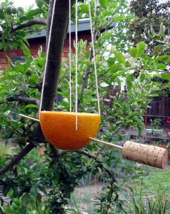 Third Grade Arts & Crafts Activities: Orange Bird Feeder