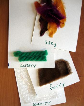 Kindergarten Science Activities: Different Textures
