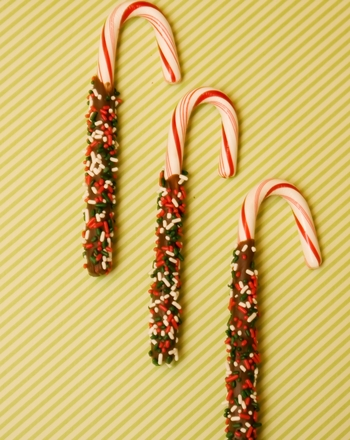 Fifth Grade Holidays & Seasons Activities: Chocolate Dipped Candy Canes