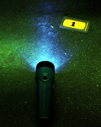 Third Grade Science Activities: Play Forensic Flashlight Tricks