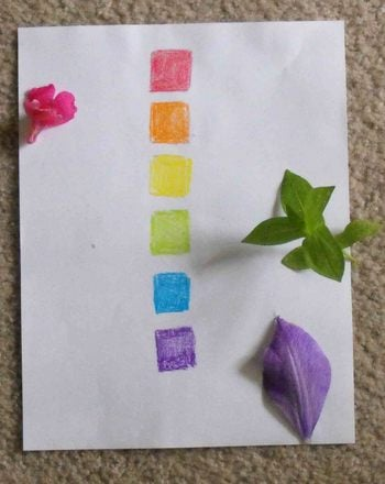 Preschool Science Activities: Color Scavenger Hunt