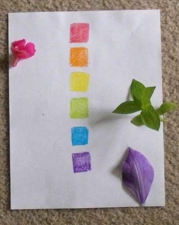 Preschool Science Activities: Color Scavenger Hunt